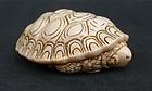 Japanese ivory netsuke turtle artist signed