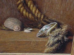 Claude Buck Still life oil sea shells and rope