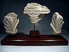Roman stone fragments of a Sarcophagus, 100 AD