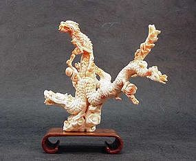 Chinese Carved Coral Dragon