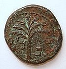 Jewish Bronze Coin of Shimon Bar Kochba 132 – 135 CE.