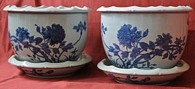 Chinese Blue White Jardiniere Flower Pot Pair