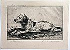 Luigi Lucioni dog etching, Missina, Christmas 1944