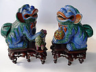 Pair Kangxi Buddhistic lions,  Aristocratic collection
