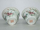 Qing Dynasty - Famille Rose Tea Cups Circa 19th/20th C.