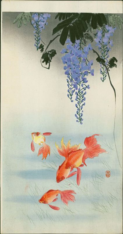 Ohara Koson Japanese Woodblock Print - Three Goldfish & Wisteria -Rare