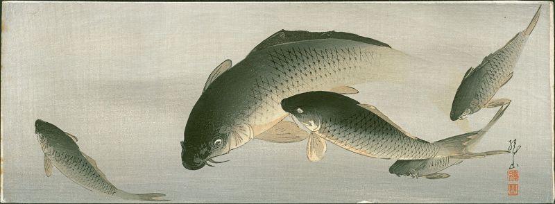Ito Sozan Japanese Woodblock Print - Swimming Carp - Rare SOLD