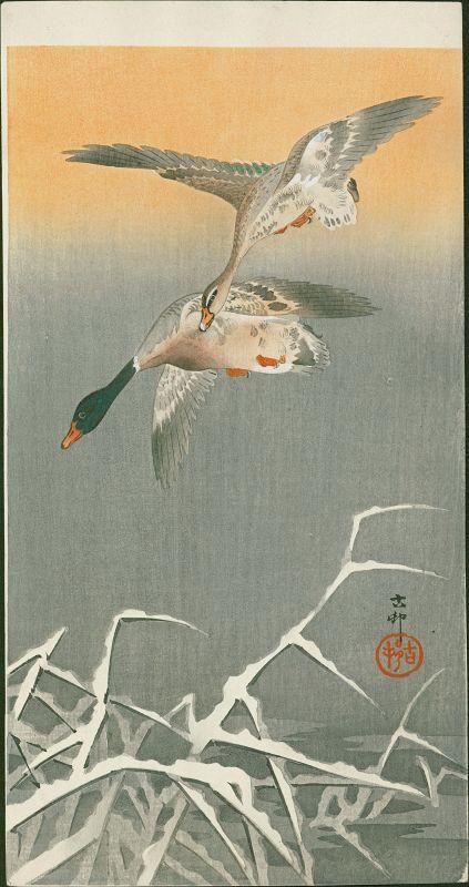 Ohara Koson Woodblock Print - Mallards in Flight - Rare Version
