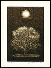 Beautiful Joichi Hoshi Woodblock - Moon and Tree