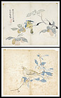 Two Chinese Album Leaves from Painting Manual, 18th.