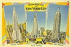 Linen Postcard, Monarchs of New York