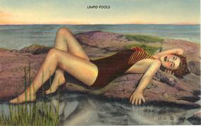 """Limpid Pools"" Vintage Linen Postcard"