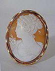 A Victorian Shell Cameo Pin