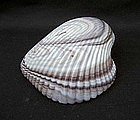 English slag glass shell