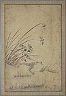 Very Fine and Old Korean Painting of Grass and Insects