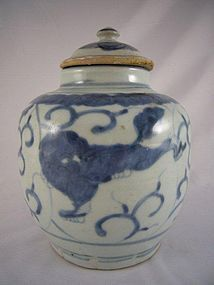 Ming Dynasty Blue and White Porcelain Jar