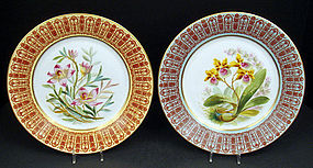 Antique Pair of Crown Derby Orchid Cabinet Plates