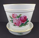 Antique Meissen Moss Rose Flower Pot & Under Plate
