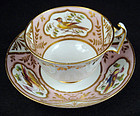 Antique Spode Ornithological Tea Cup & Saucer