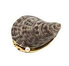 Edwardian 14K Gold, Enamel & Pearl Oyster Shell Brooch