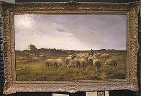 Flock of Sheep: Cornelius Westerbeek