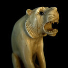 IVORY LION CANE c.1900-1910 FIGURAL/ROSEWOOD
