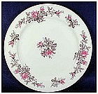 Roxanne by Kyoto salad plates