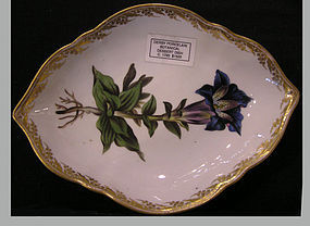 Derby Porcelain Botanical Triangular Dessert Dish