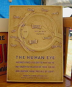 1950s Bausch & Lomb Graphic EYE Display Advertisement