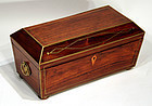 Fine English Regency Tea Caddy