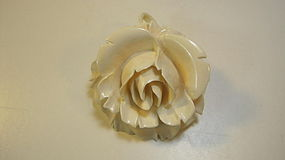 An Old Large Size Chinese Ivory Flower Pendant