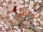 Antique Japanese Cherry Blossom Screen, Pheasant