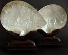 Chinese mother of pearl carved shells