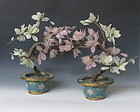 Pair of Stone Magnolia Plants with Cloissonne Pot